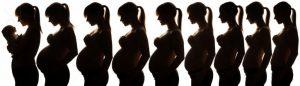 cambio cuerpo embarazo